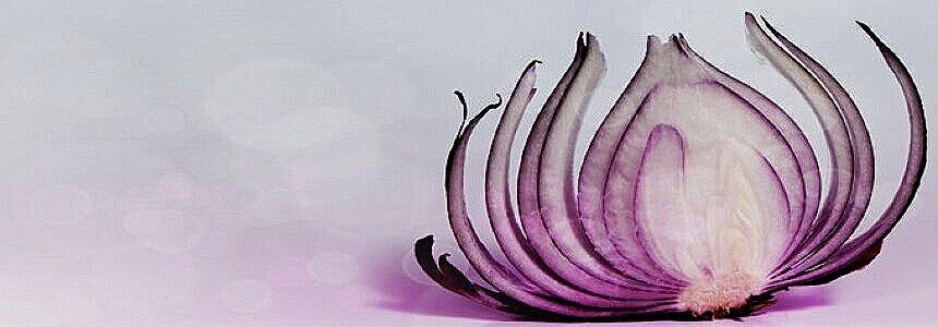 onion-n2fhsqcdk8a1irebz8ua3d5ne782hyz8xa8ek3jph4.jpg