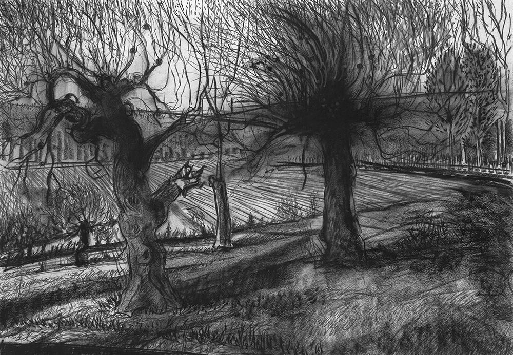 Abandoned Orchard  30 x 44