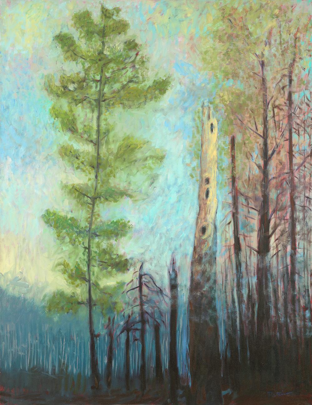 Nursery Tree  oil on canvas 46 x 58