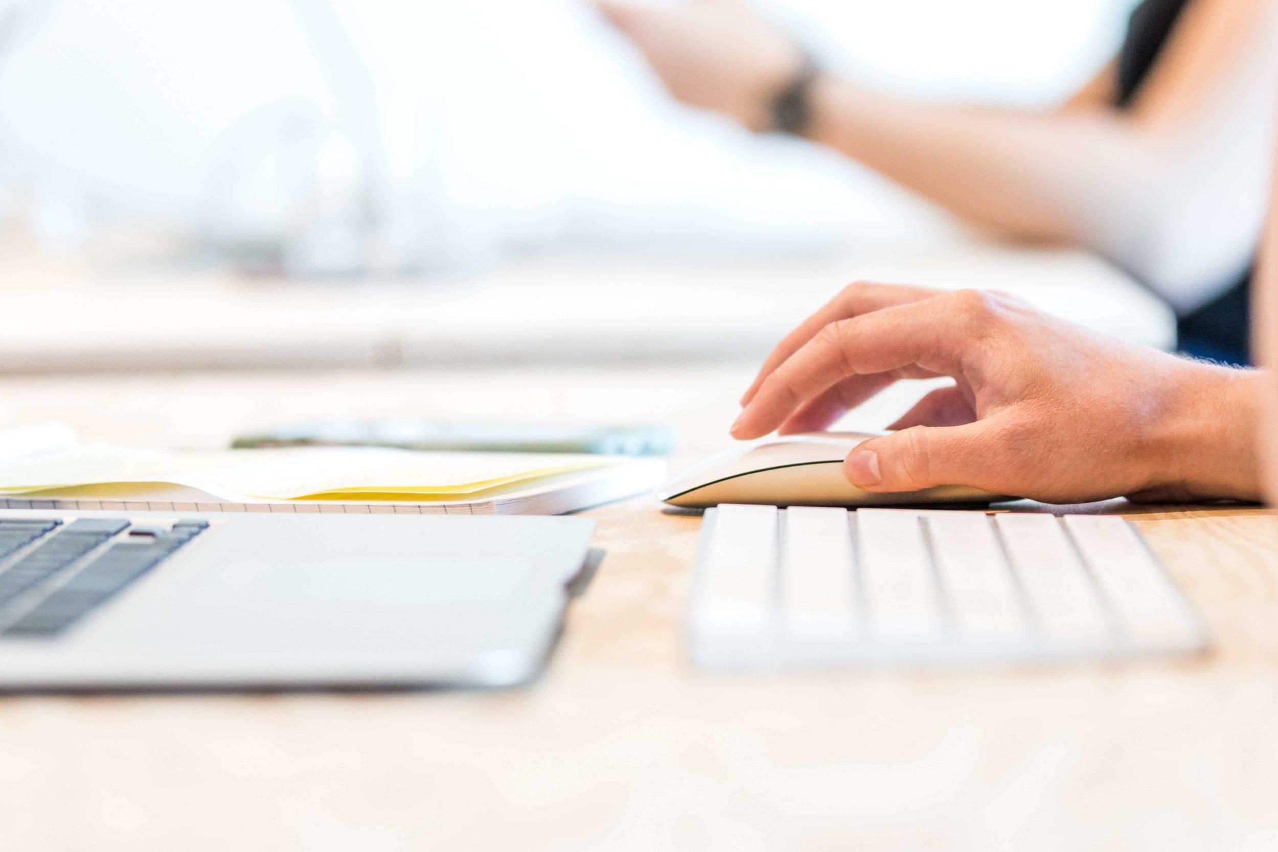 Web Design Usability - Visitor using website
