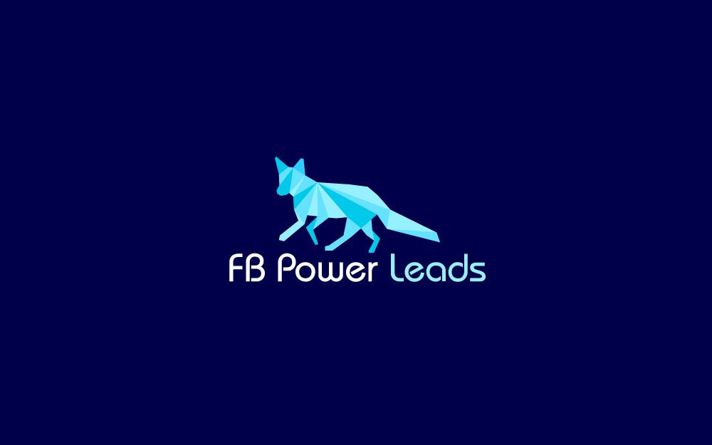 FBPowerLeads_1.jpg