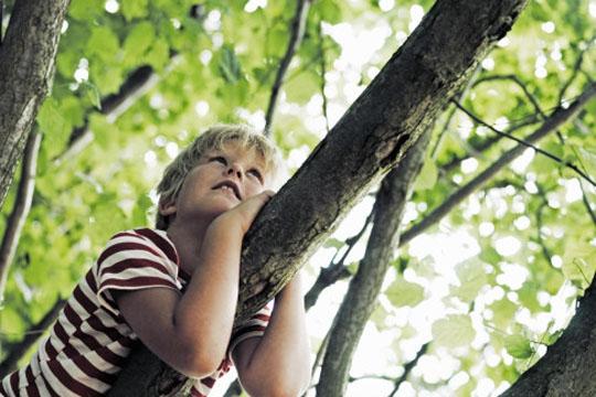 kids-in-nature.jpg