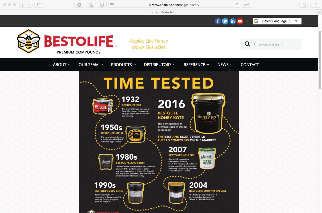 Bestolife Website_4.png