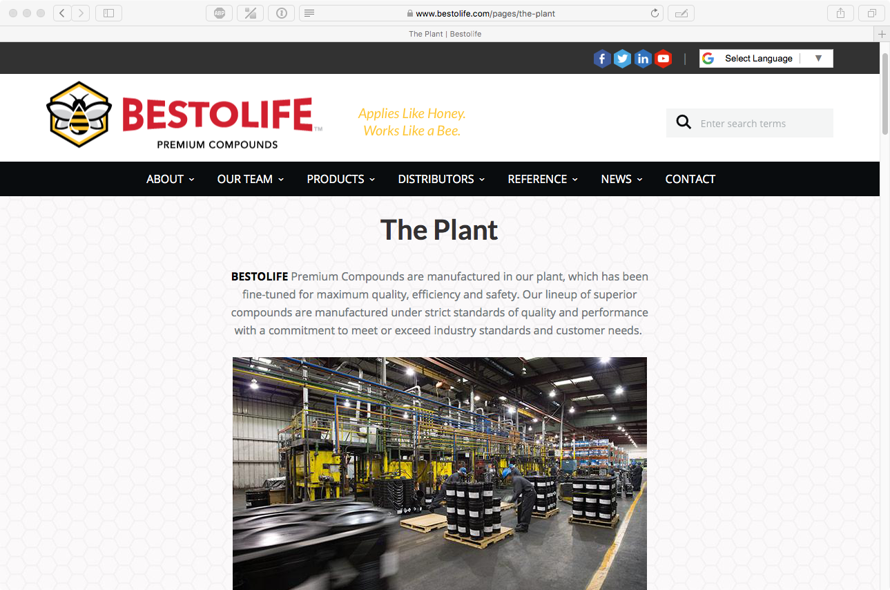 Bestolife Website_5.png