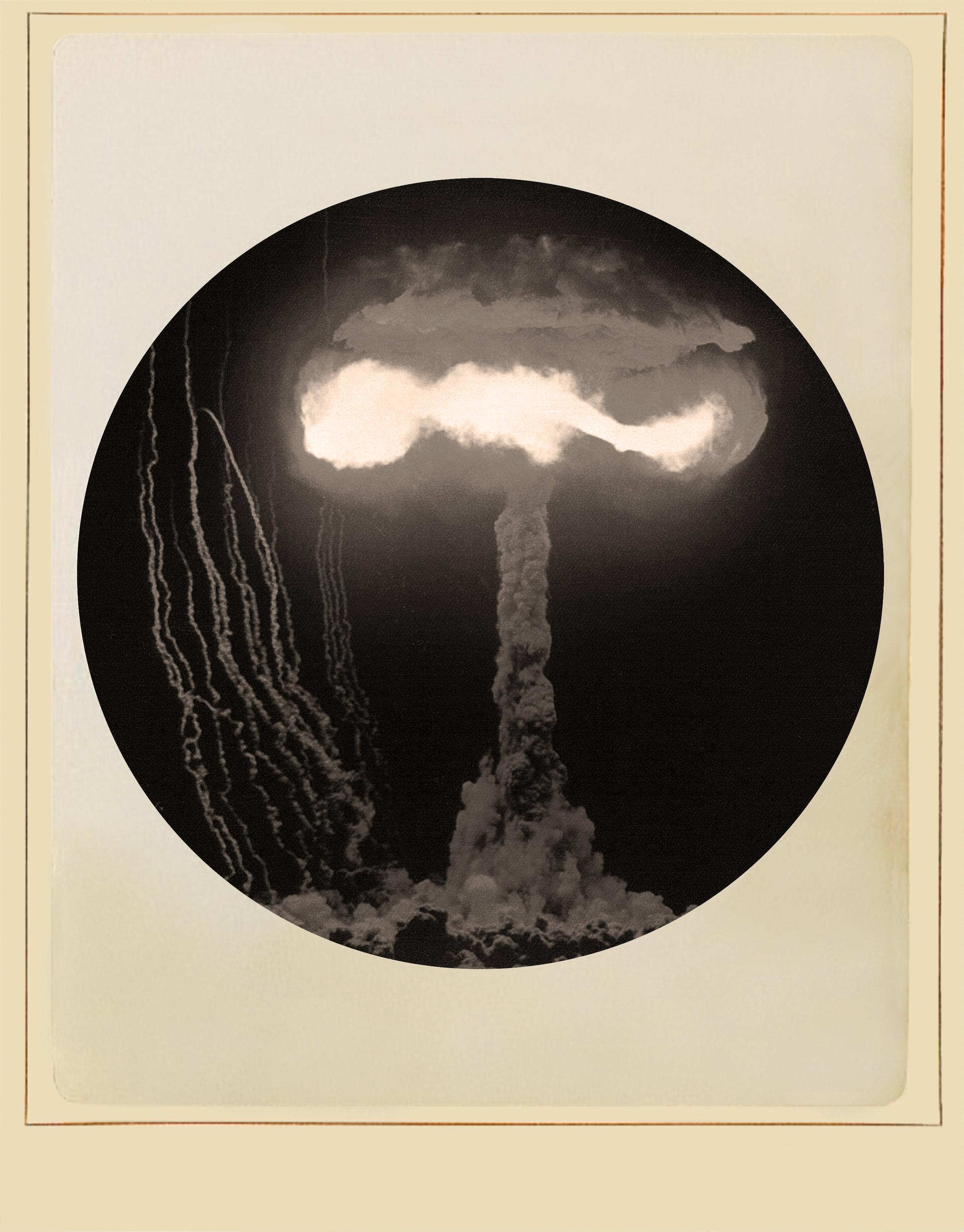mushroom3 copy.jpg