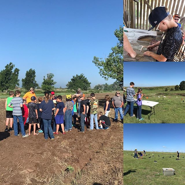 Youth conservation education in action!! Great group of 4-H kids being hosted by the Homesteaders @quail_forever chapter to learn habitat, Pollinators, fishing, air rifles, soil conservation, wildlife and more! #nochildleftindoors #quailforever #habitatmatters #pollinators