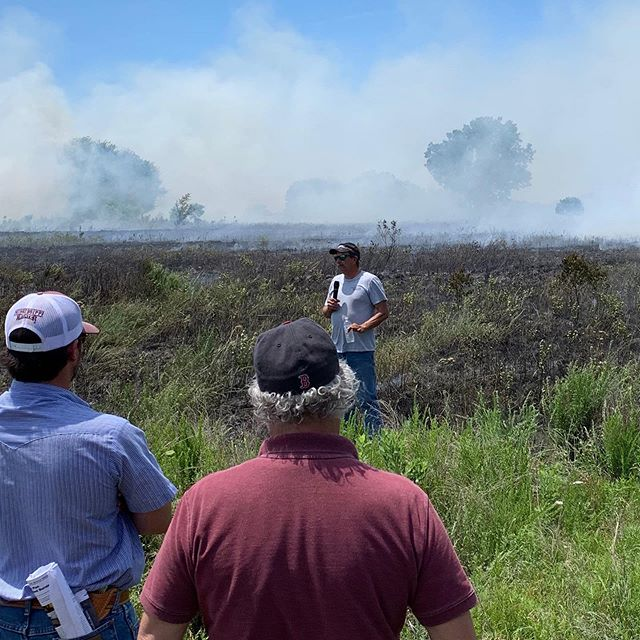 What a day!! Both landowners and agencies from far and wide gathered at the OSU research range in Stillwater to learn about the MANY benefits of conducting growing season prescribed fire. Following a morning of learning the wildlife and range quality benefits, participants then applied their newly acquired knowledge to the ground in a small prescribed fire! A HUGE thank you to everyone who had a hand in organizing this and putting it on! #prescribedfire #quailforever #pheasantsforever #wildlife #habitat