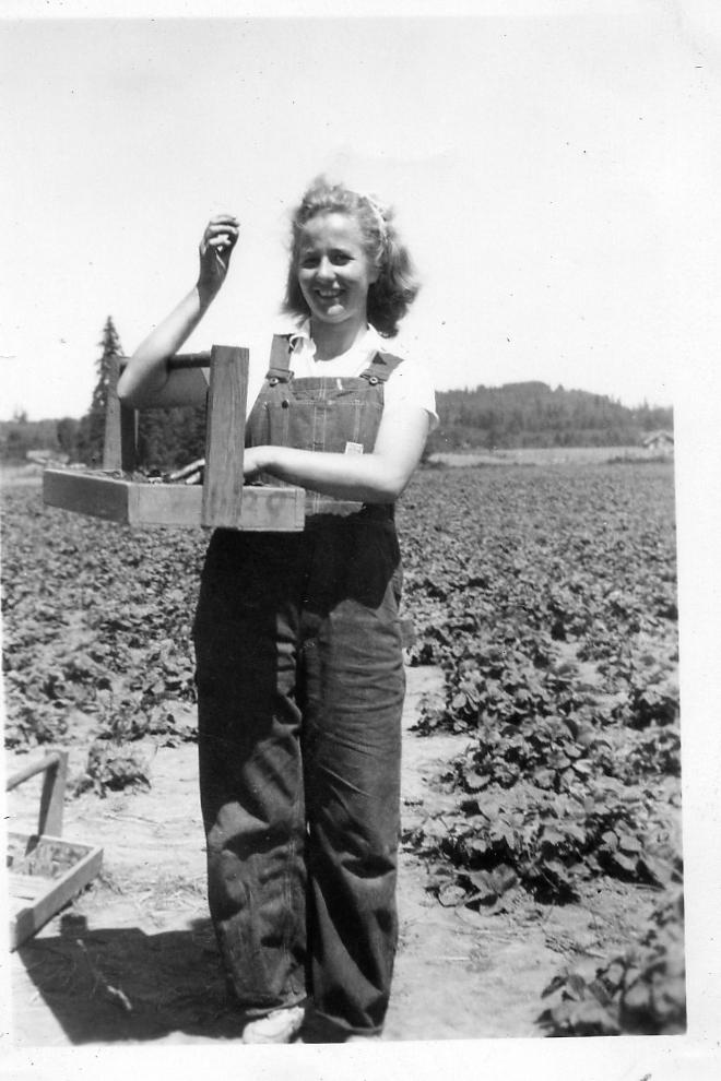 Dixie's mother, Julienne, in Winlock, picking strawberries. June 1944