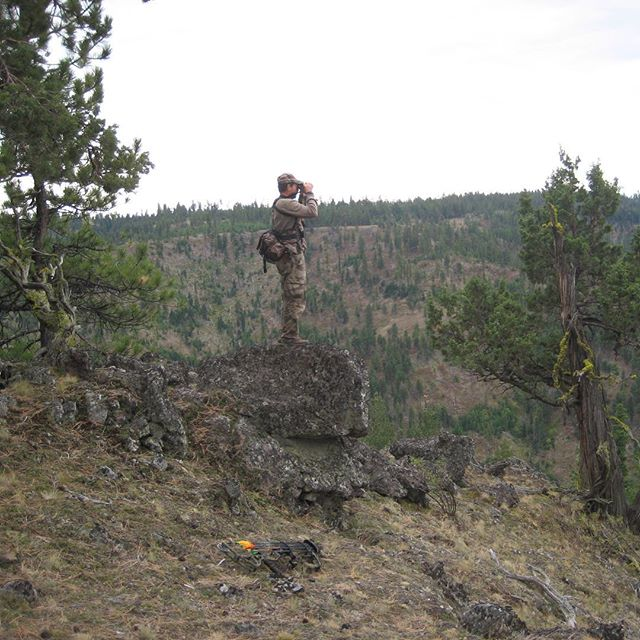 Big canyons to glass...I know they're here. #bowhunting #elkhunting #huntinggear #callcaddy