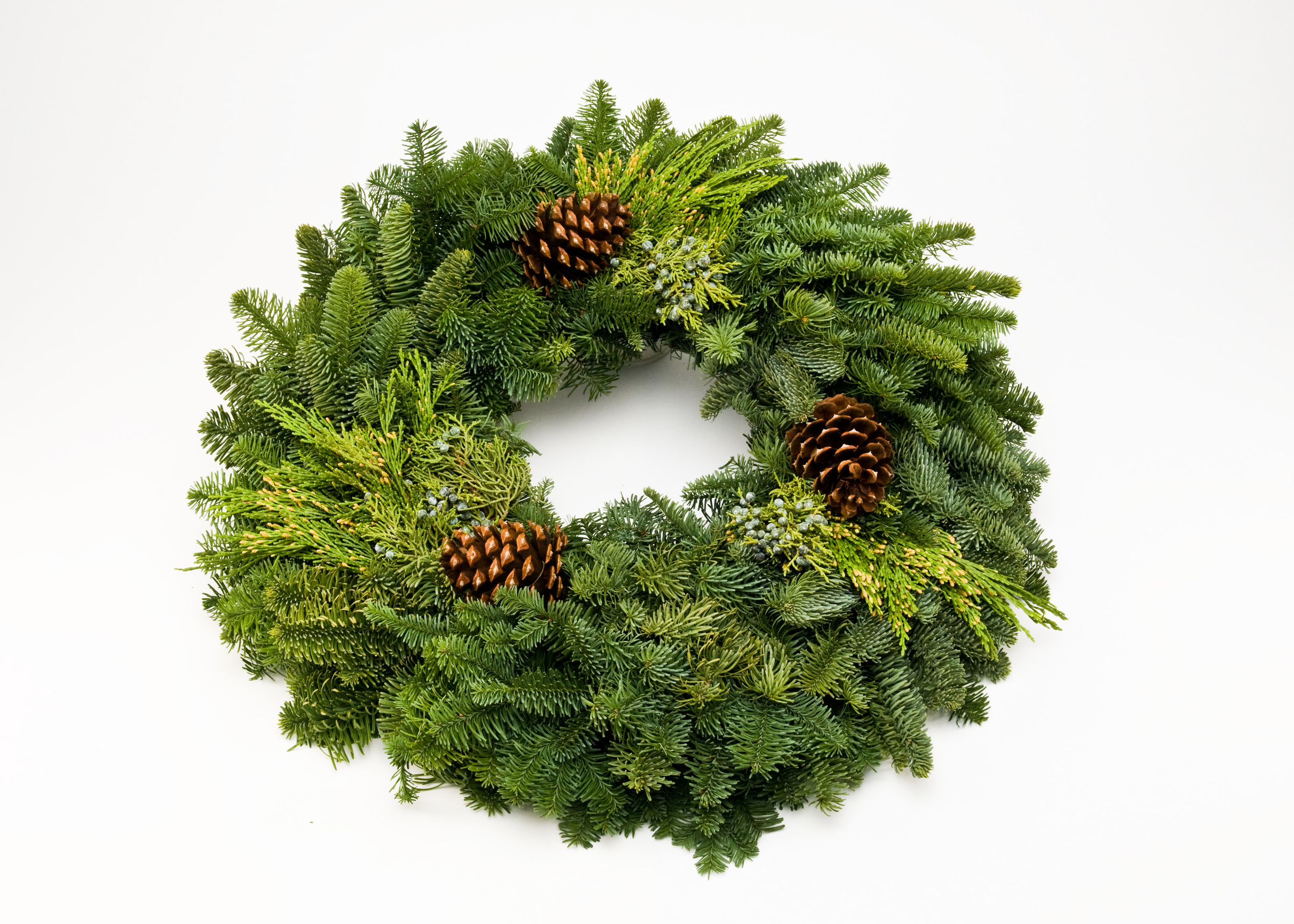 """Pacific Elegance"" Mixed wreath w/cones"