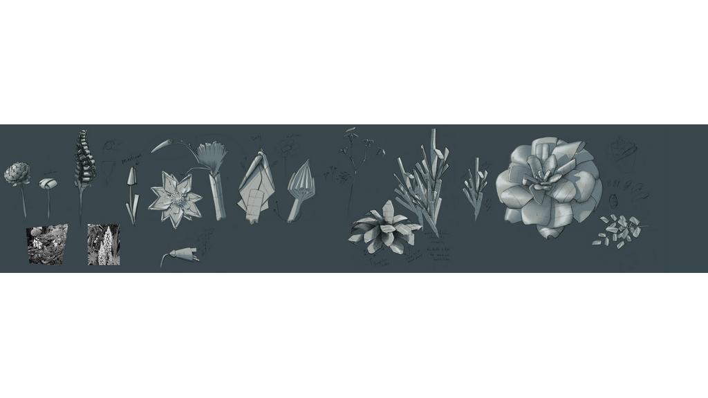 flowerConcepts.jpg