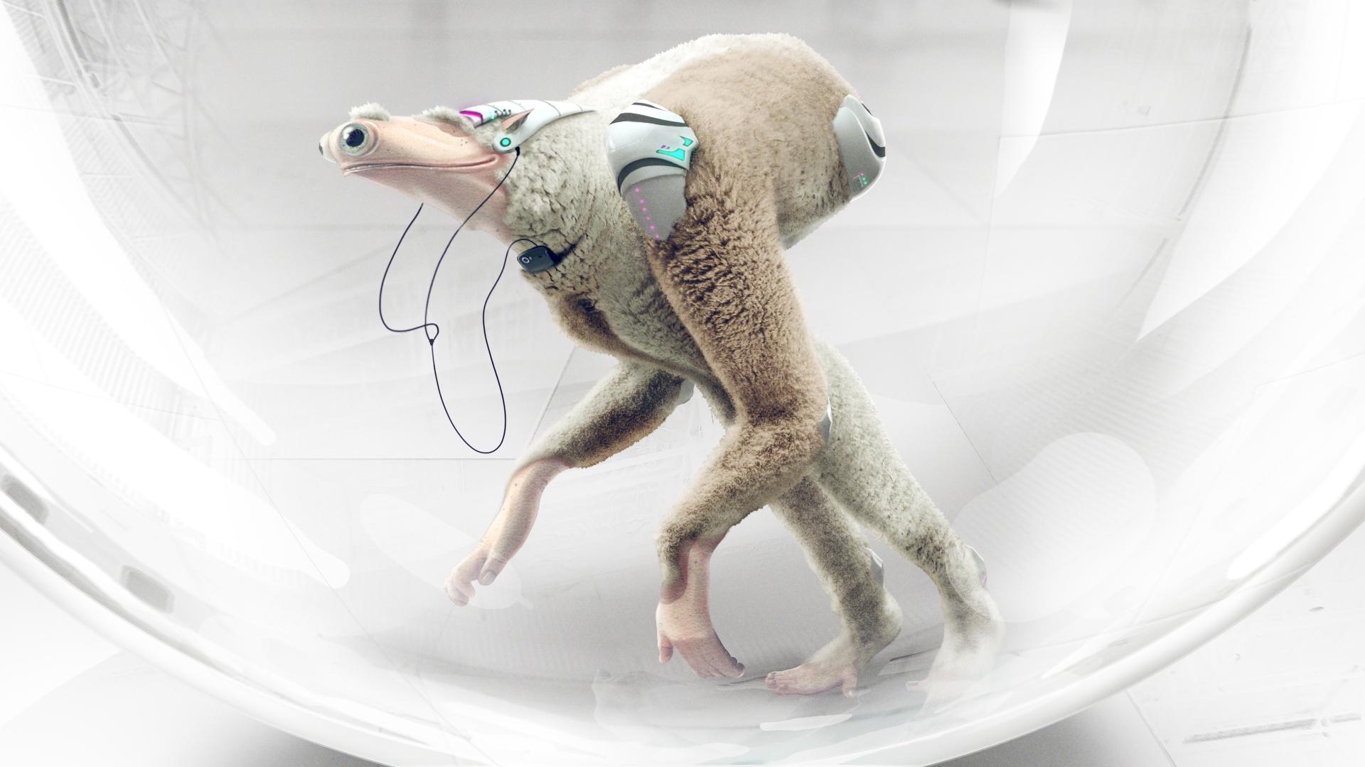 Critter concept