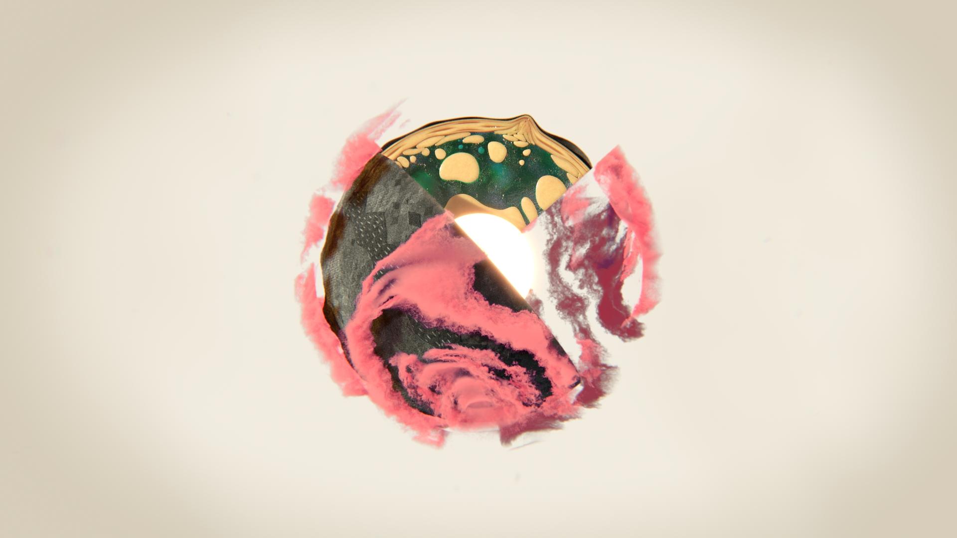 Dead Reel Intro   C.D. / Design