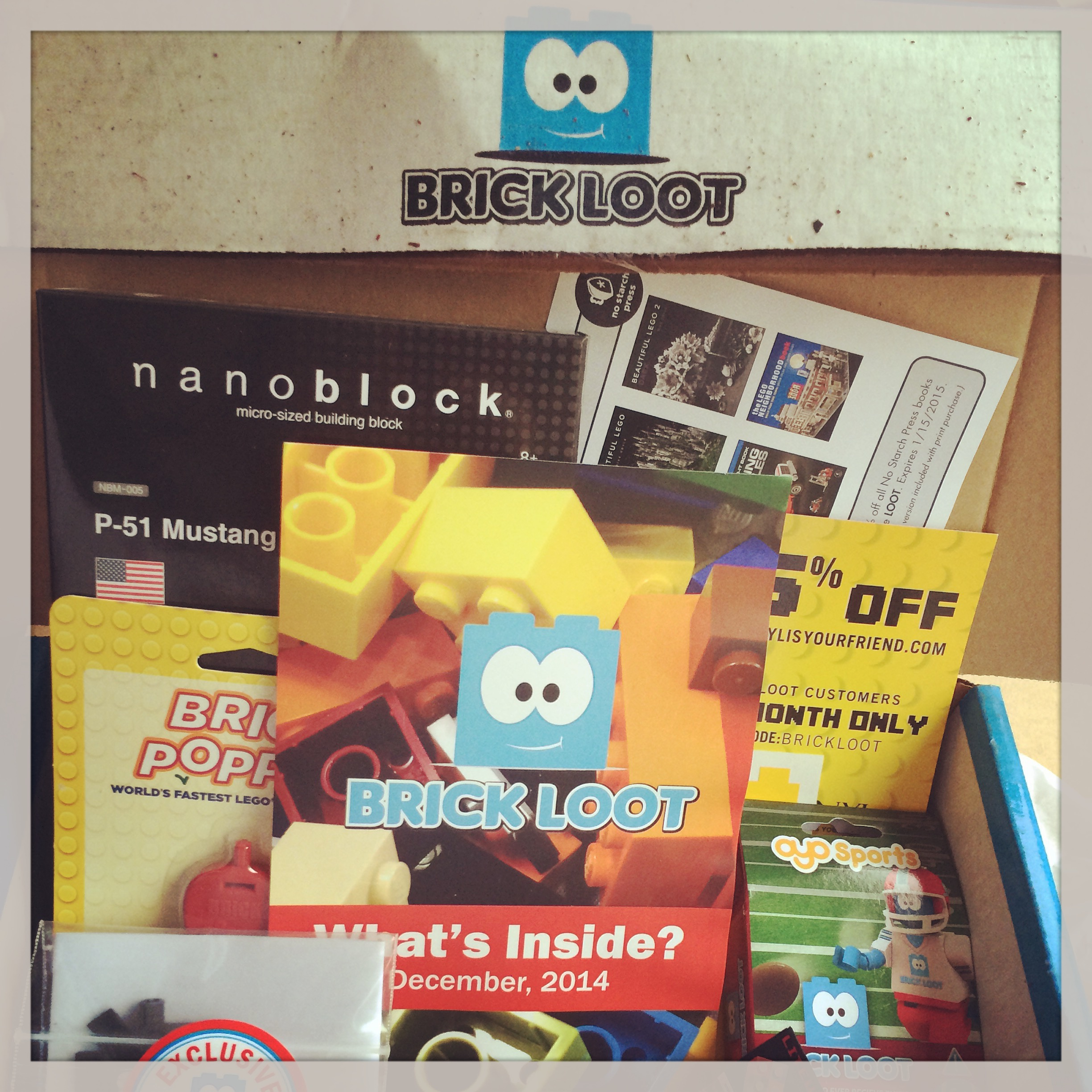 Brickloot_Review