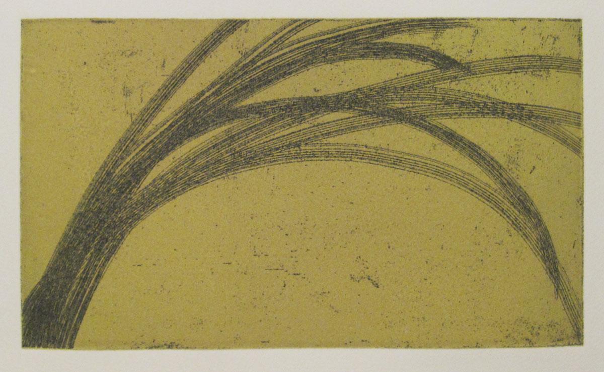 Reeds-Yellow.jpg