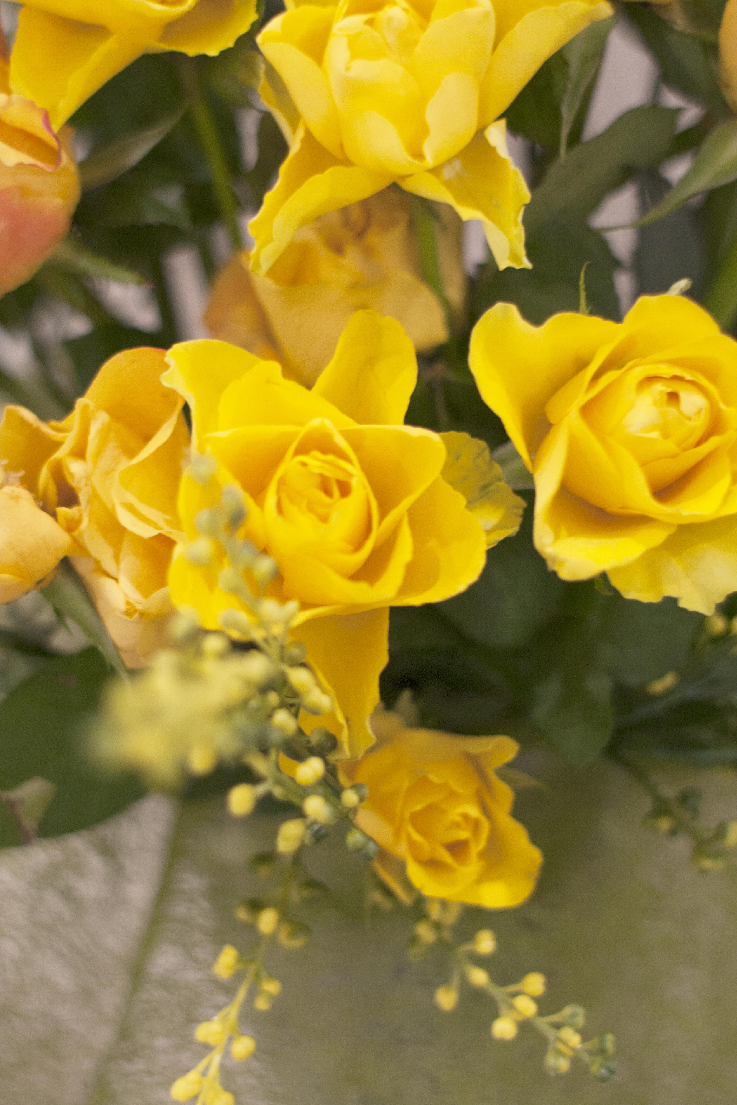 kwiaty cudownie ozdabiały nasze spotkania. również dzięki nim mamy u siebie namiastkę nieba...i dzięki bożence.