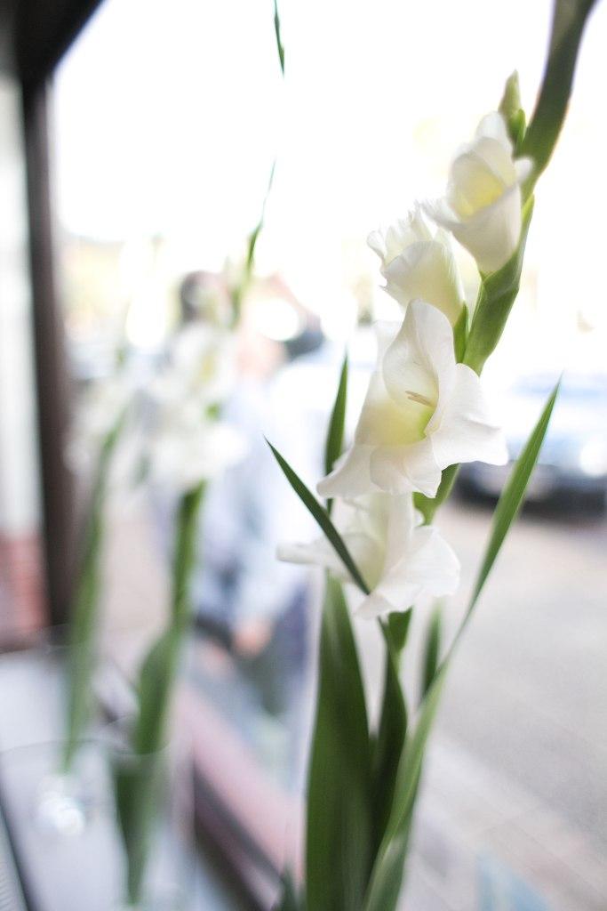 wybiła 11:00, kwiaty stoją, ludzie siedzą, niebieski ludek idzie, cisza powoli zapada, czuć obecność Najwyższego i zaczyna się uwielbienie.