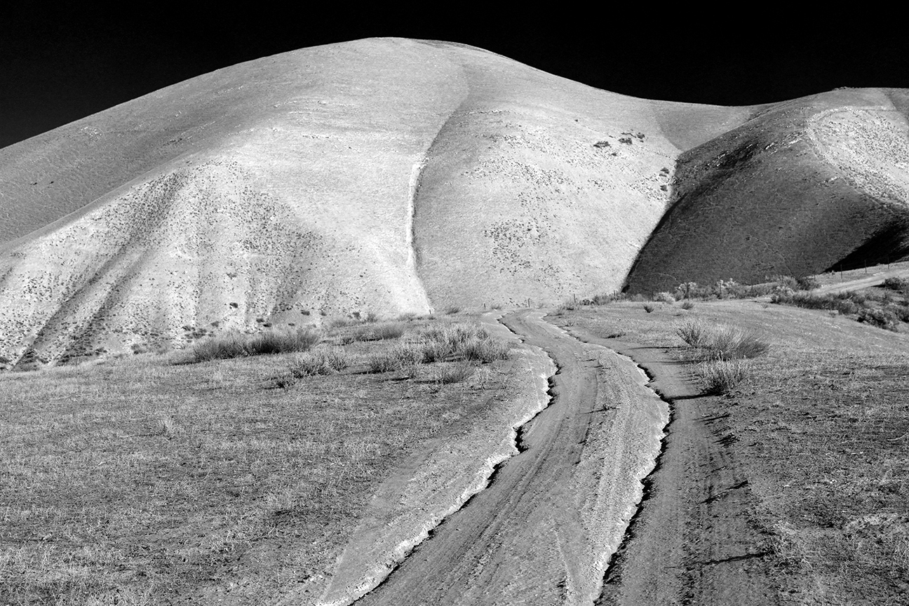 Images from the Carrizo Plain National Monument