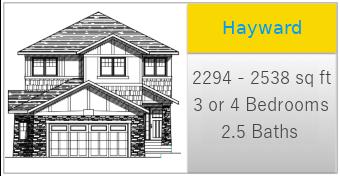 Hayward-Icon.png