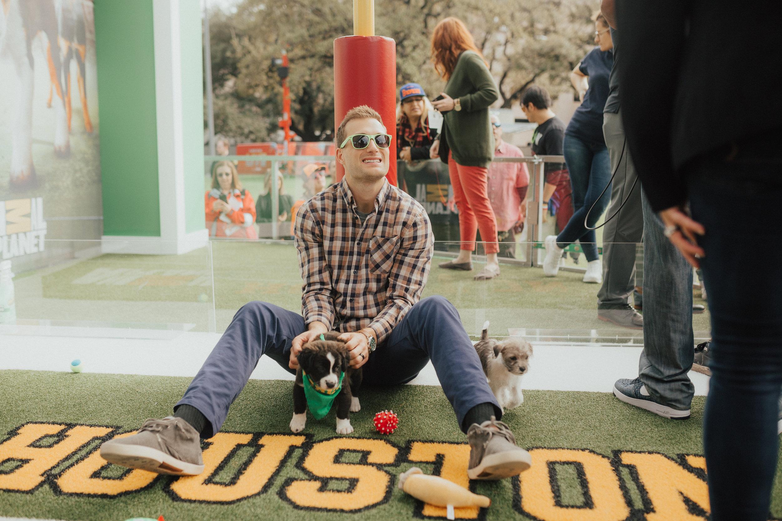 puppybowl-2.jpg