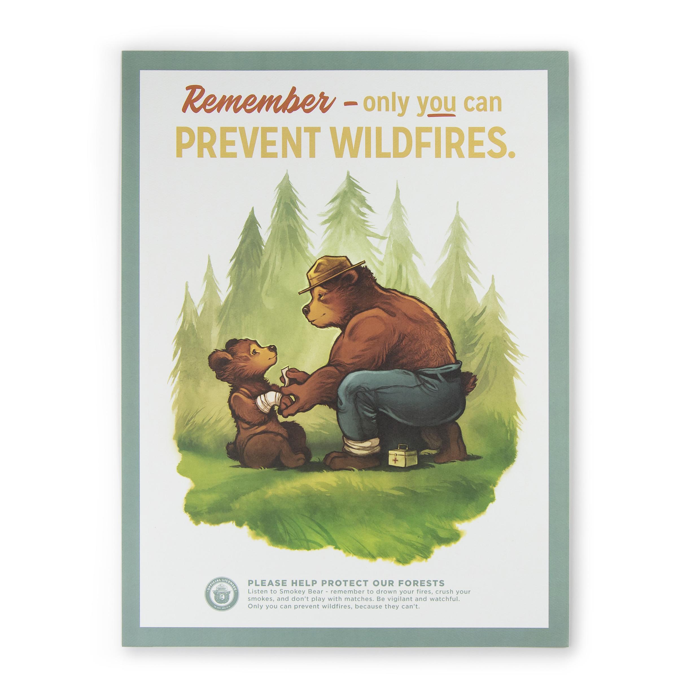 1322020001-preventfires-poster-01.jpg