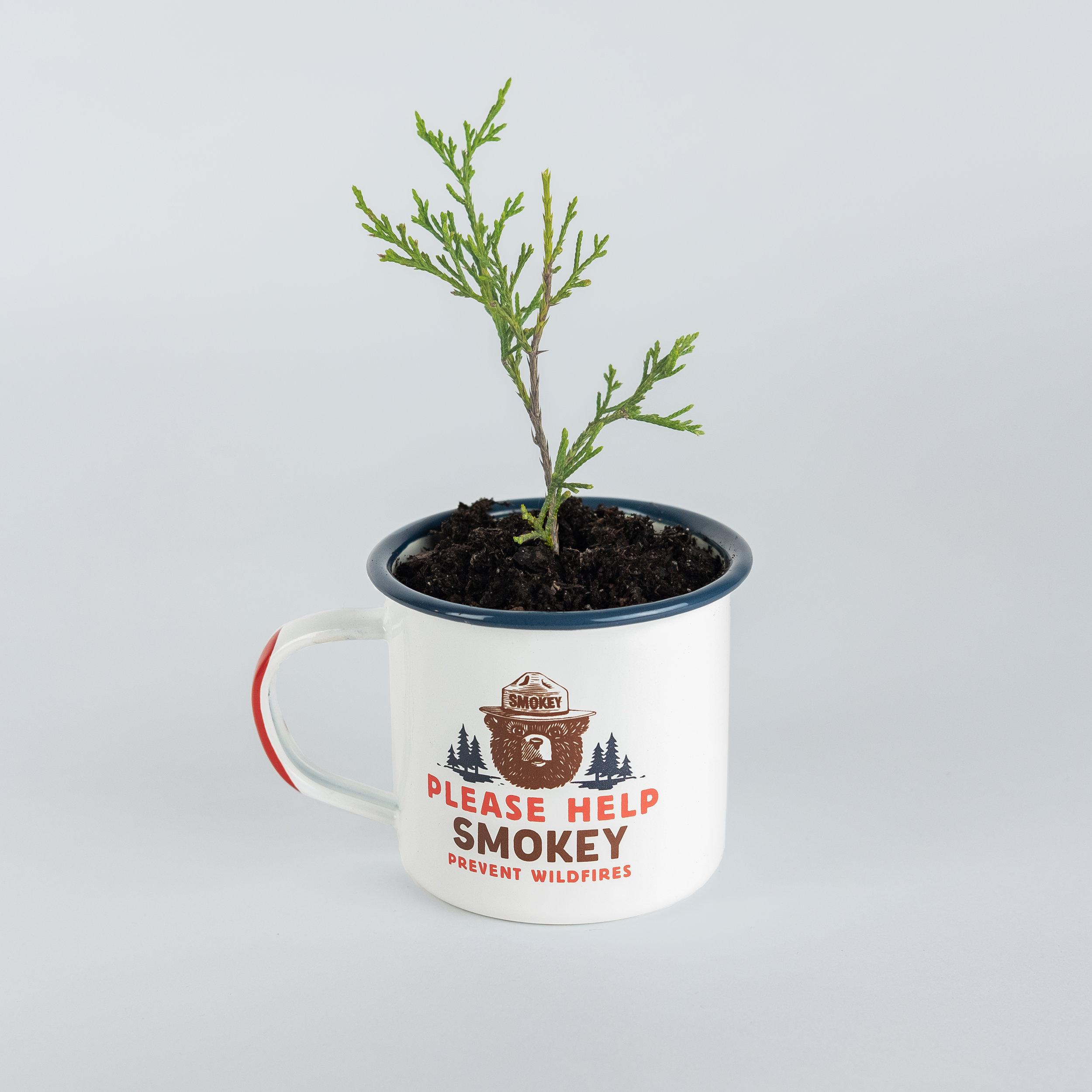 sprout-smokey-mug.jpg