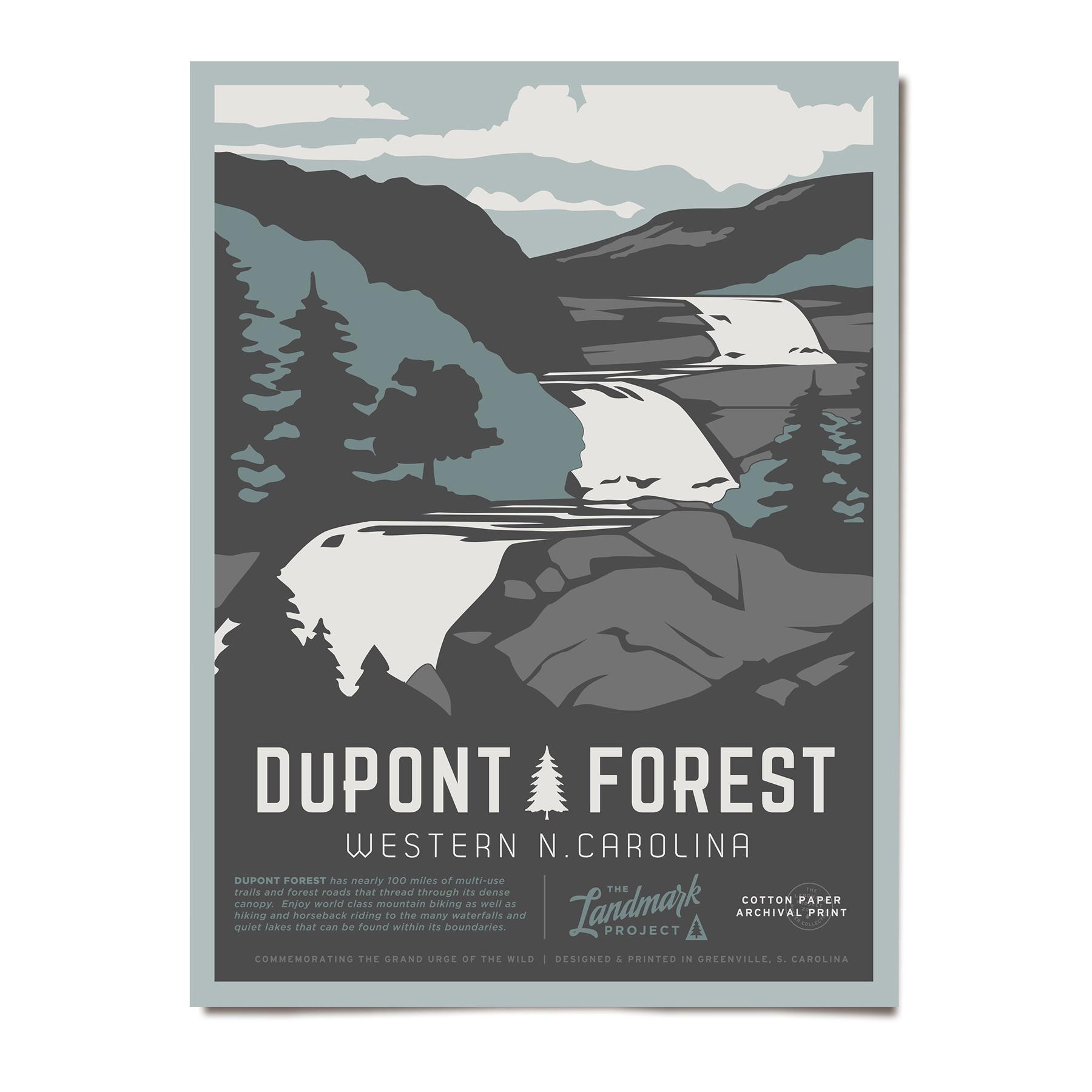 dupont-forest-poster.jpg