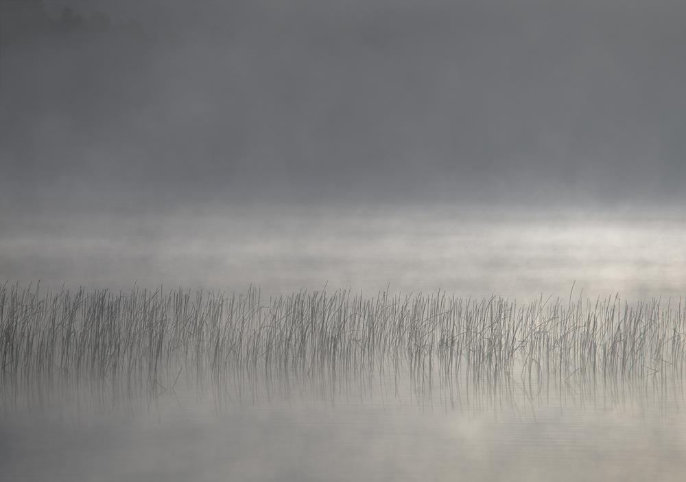 Light Waters II (2015)