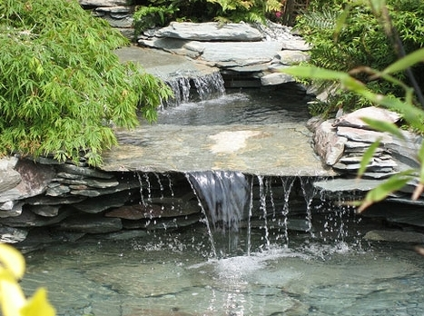 london-ontario-landscaper-pool-pond-design-garden-company-hunter-home-garden-16.jpg