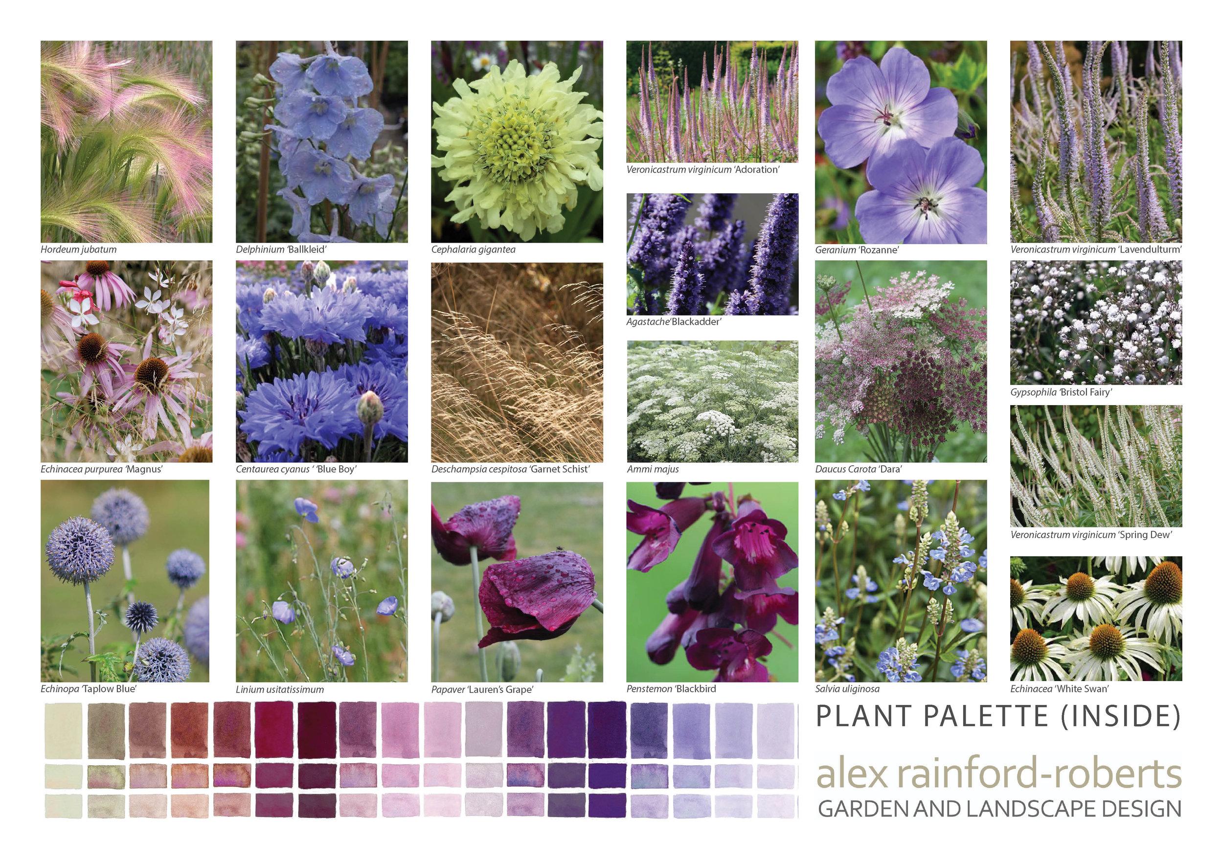 Plant Palette Apeiron (Inside)