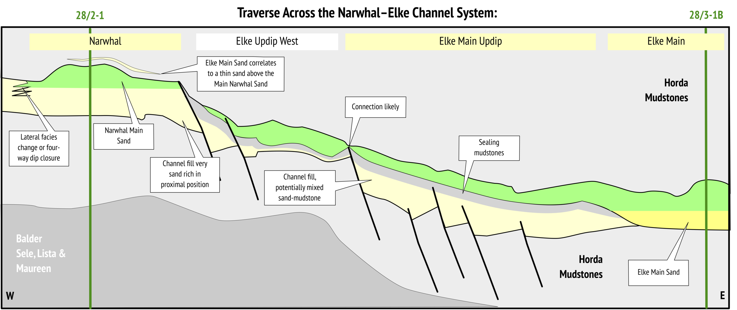 Geological cross-section across the Elke & Narwhal discoveries
