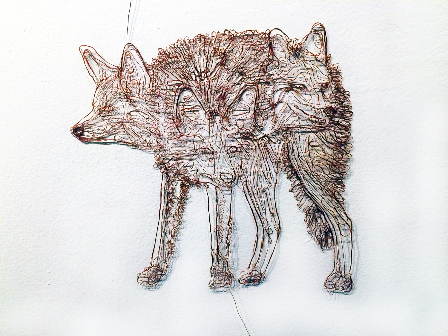 TAYLOR_BETHANY_COYOTE_THREAD_22in_22in.jpg