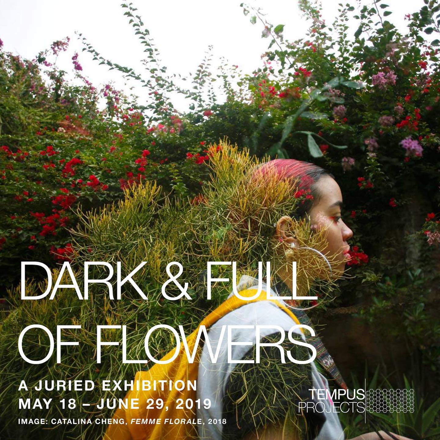 darkfullofflowers_tempus2019.jpg