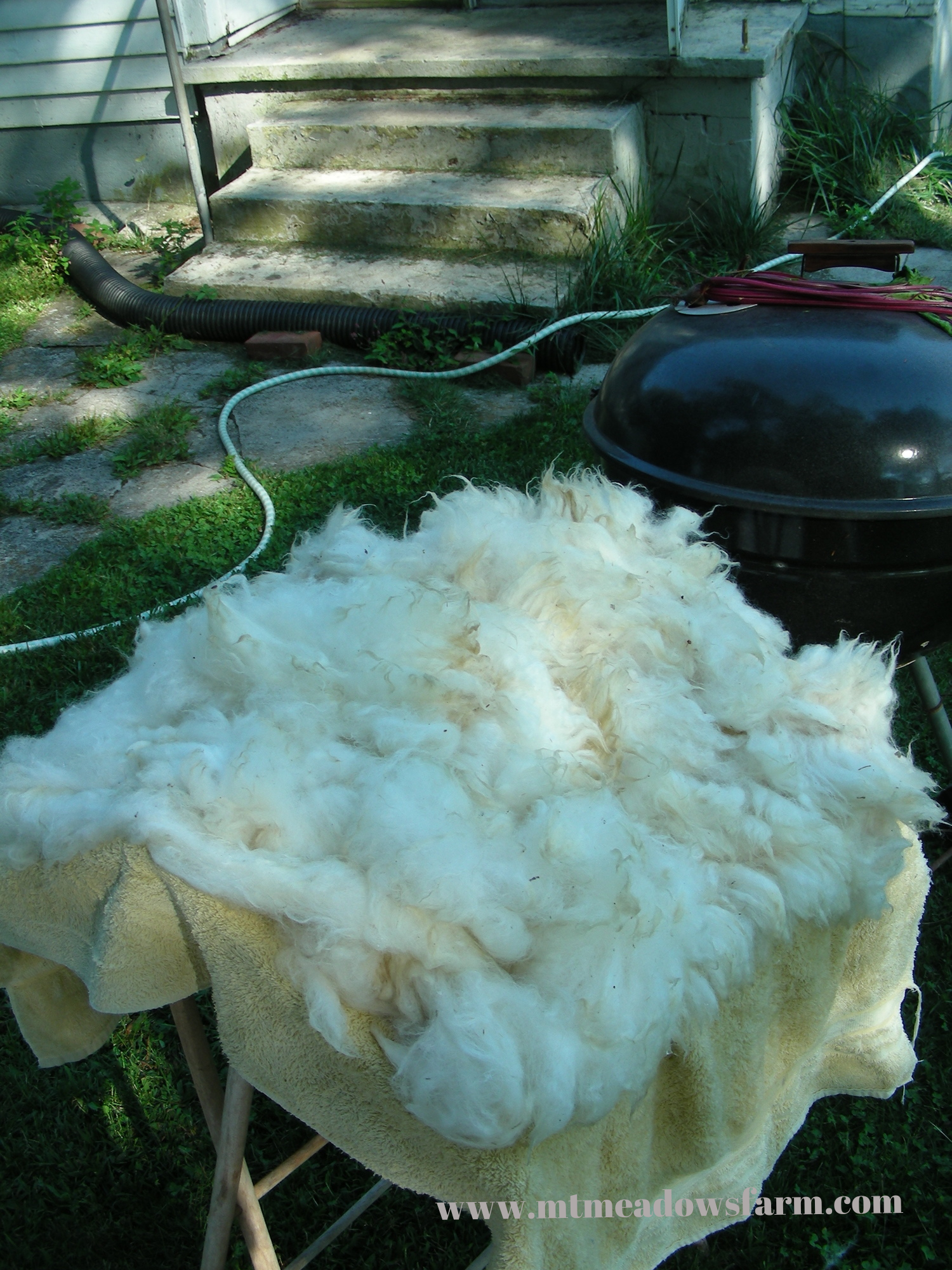 Fleece drying