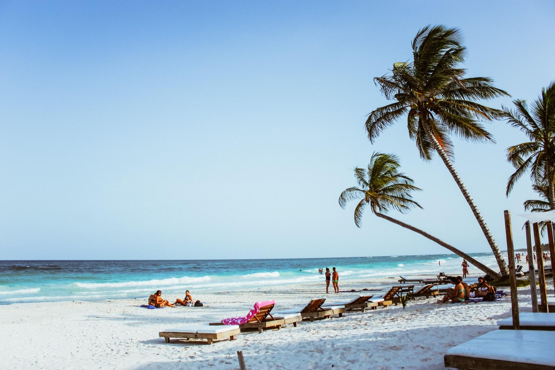 tropical beach.jpeg