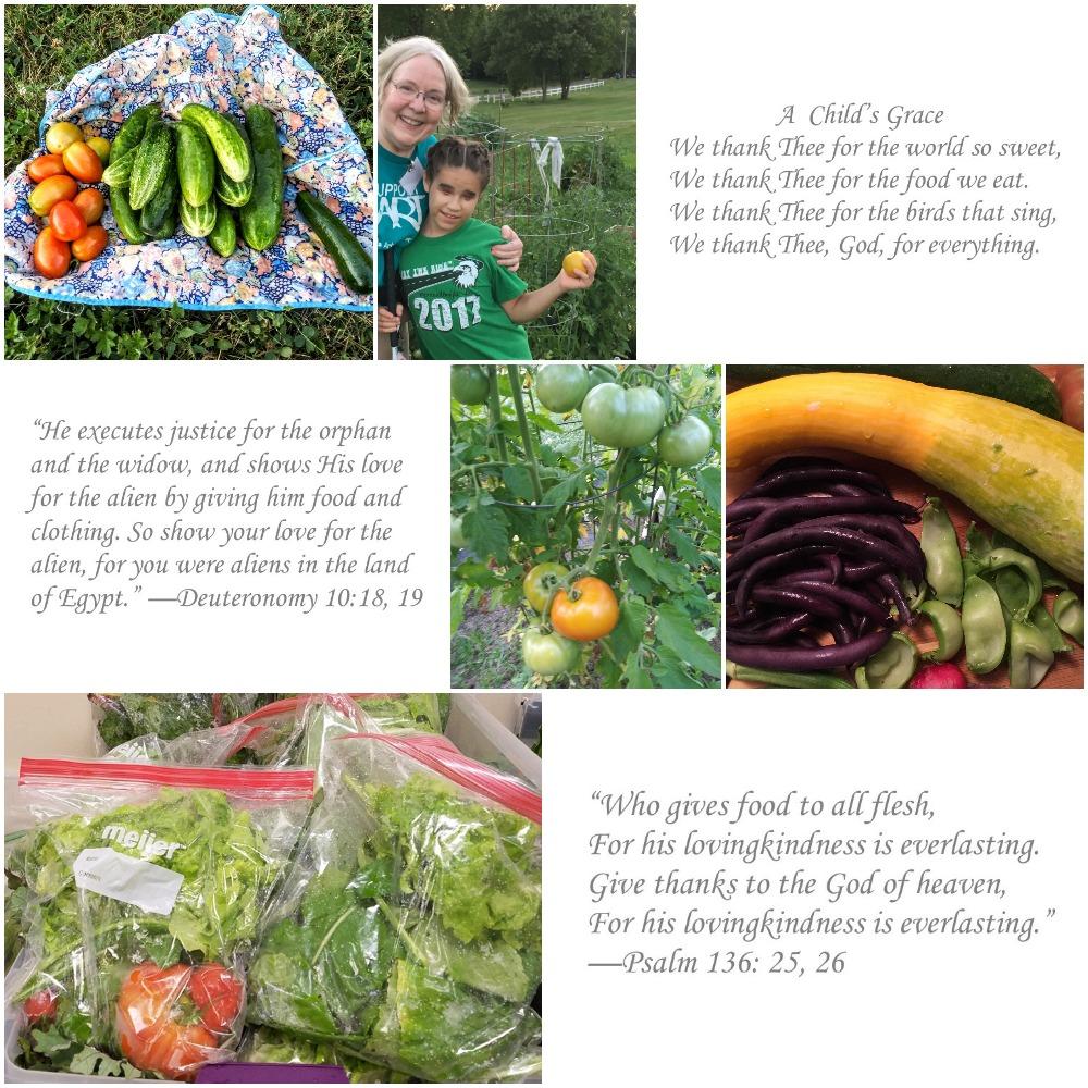 garden collage.jpg