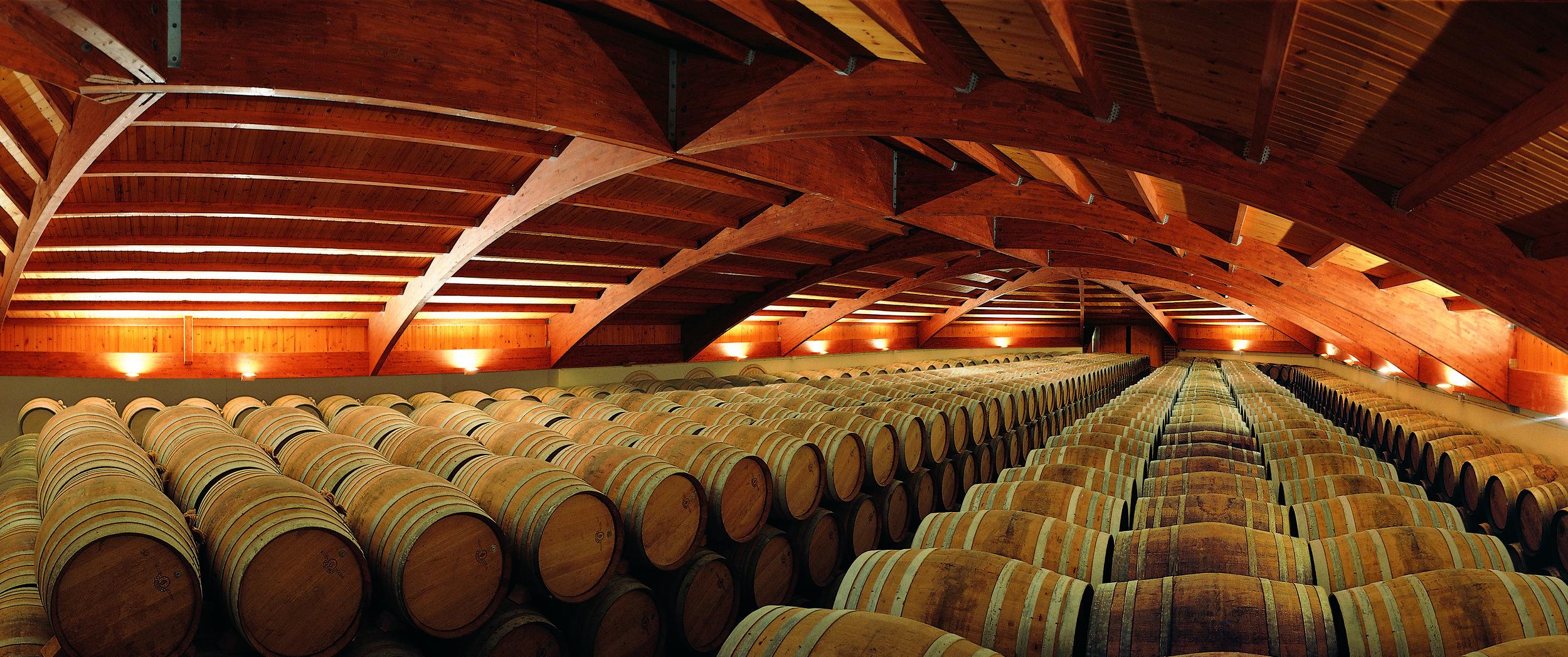 B Campillo_panoramica barrels.jpg