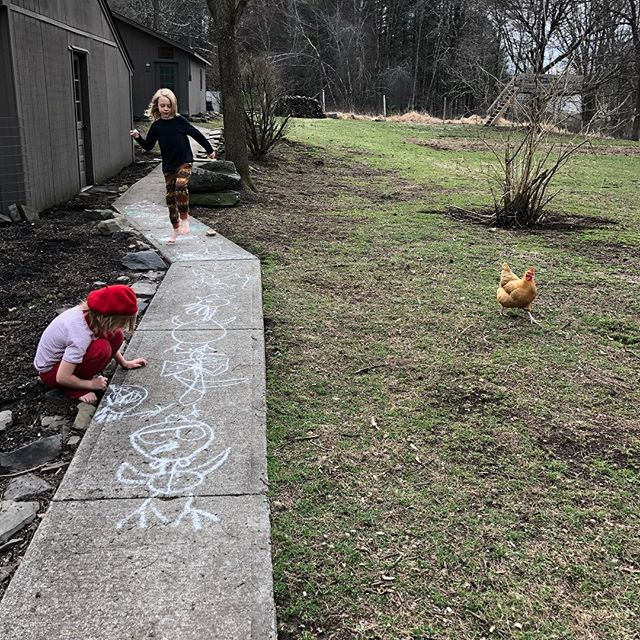 Today.  #unschooled #drawingfromlife #chickens #homeschool #unschool #chalk #homestead #beret #rasberryberet #today #hudsonvalley #woodstock #kingston #brothers #longhairdontcare