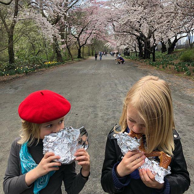 Today!  #guggenheim #guggenheimmuseum #centralpark #uppereastside #homeschool #beret #pretzels #cherryblossoms #foodcart #unschool #nyc #iloveny #spring