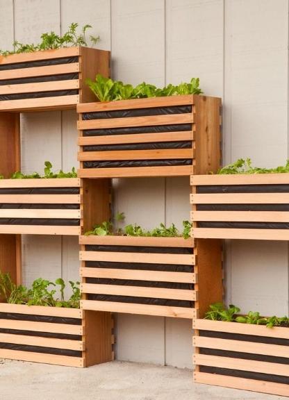 diy-vertical garden.jpg
