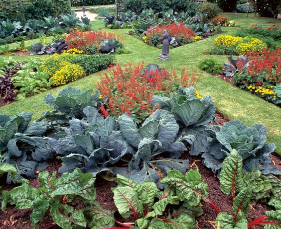 Image found on http://www.finegardening.com/article/who-says-a-kitchen-garden-cant-be-beautiful