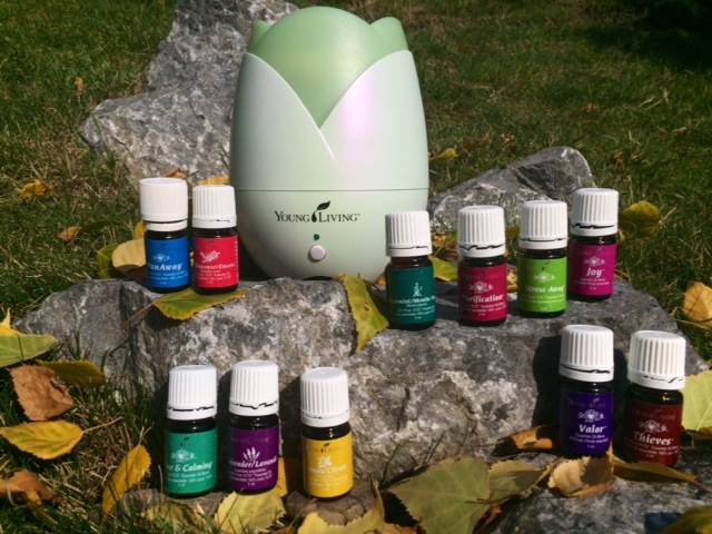 The Premium Starter Kit ($200) comes with 10 oils - Peace & Calming, Valor, Lemon, Thieves, Pan Away, Peppermint, Purification, Frankincense and Joy and the Lotus shaped diffuse (they have NOW upgraded the diffuser to a dewdrop shape).