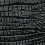 Iguana negro