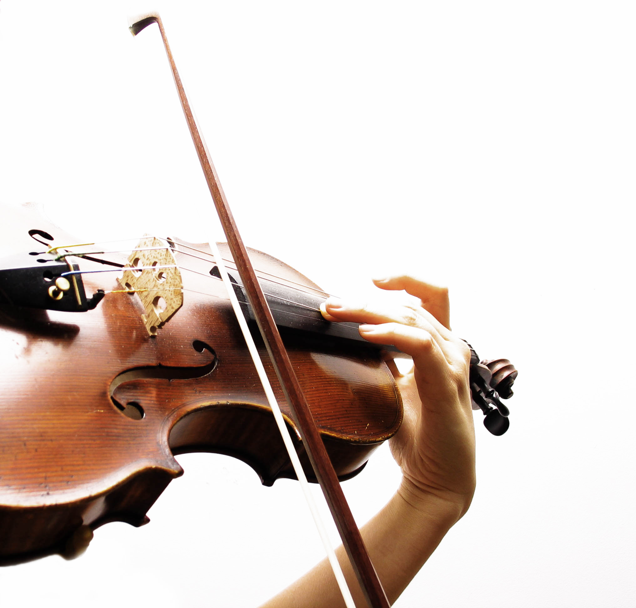 Federal-Way-School-of-Music-Violin-Viola-Lessons-Rentals