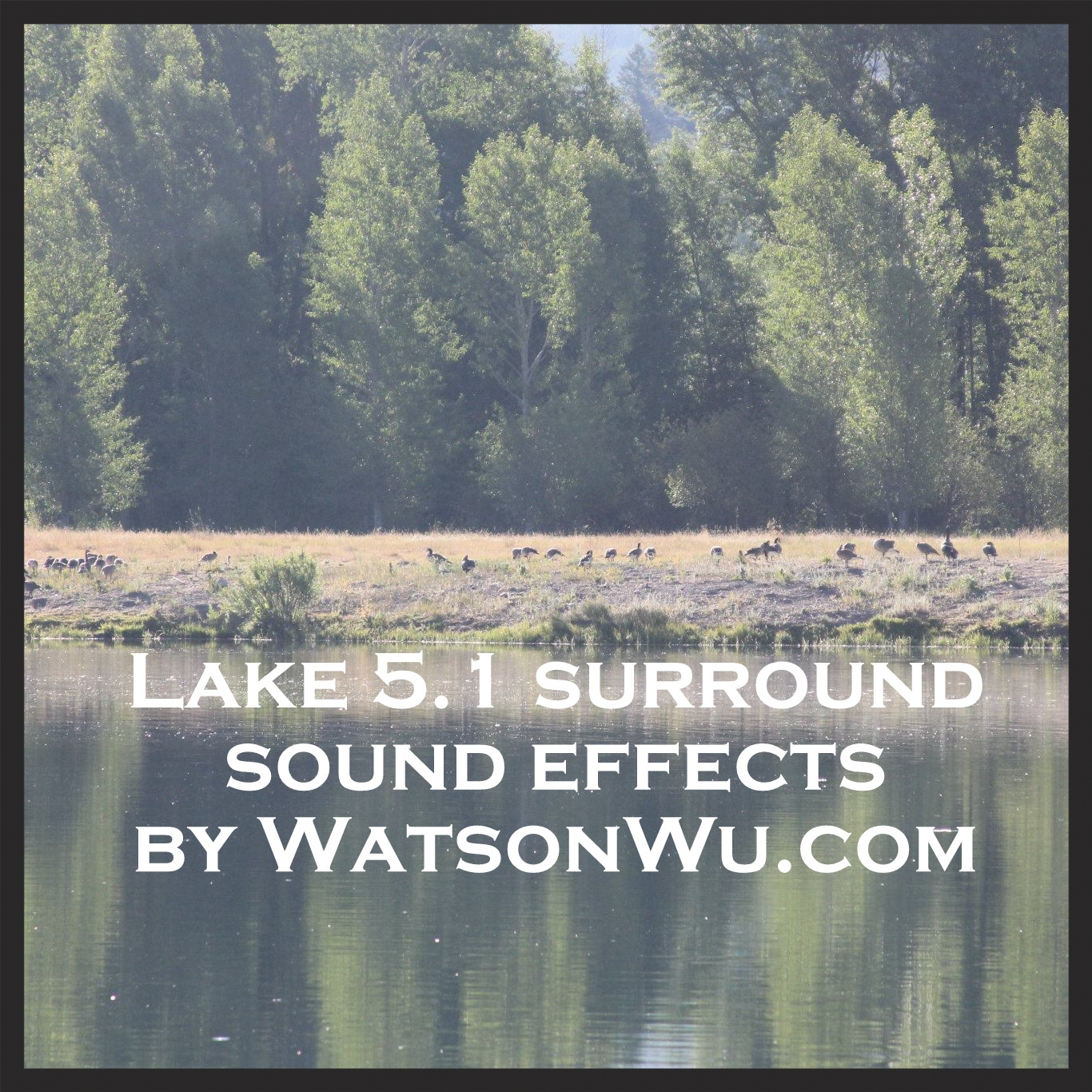 Watson Wu - Lake ambience 5.1 surround sound effects library.jpg