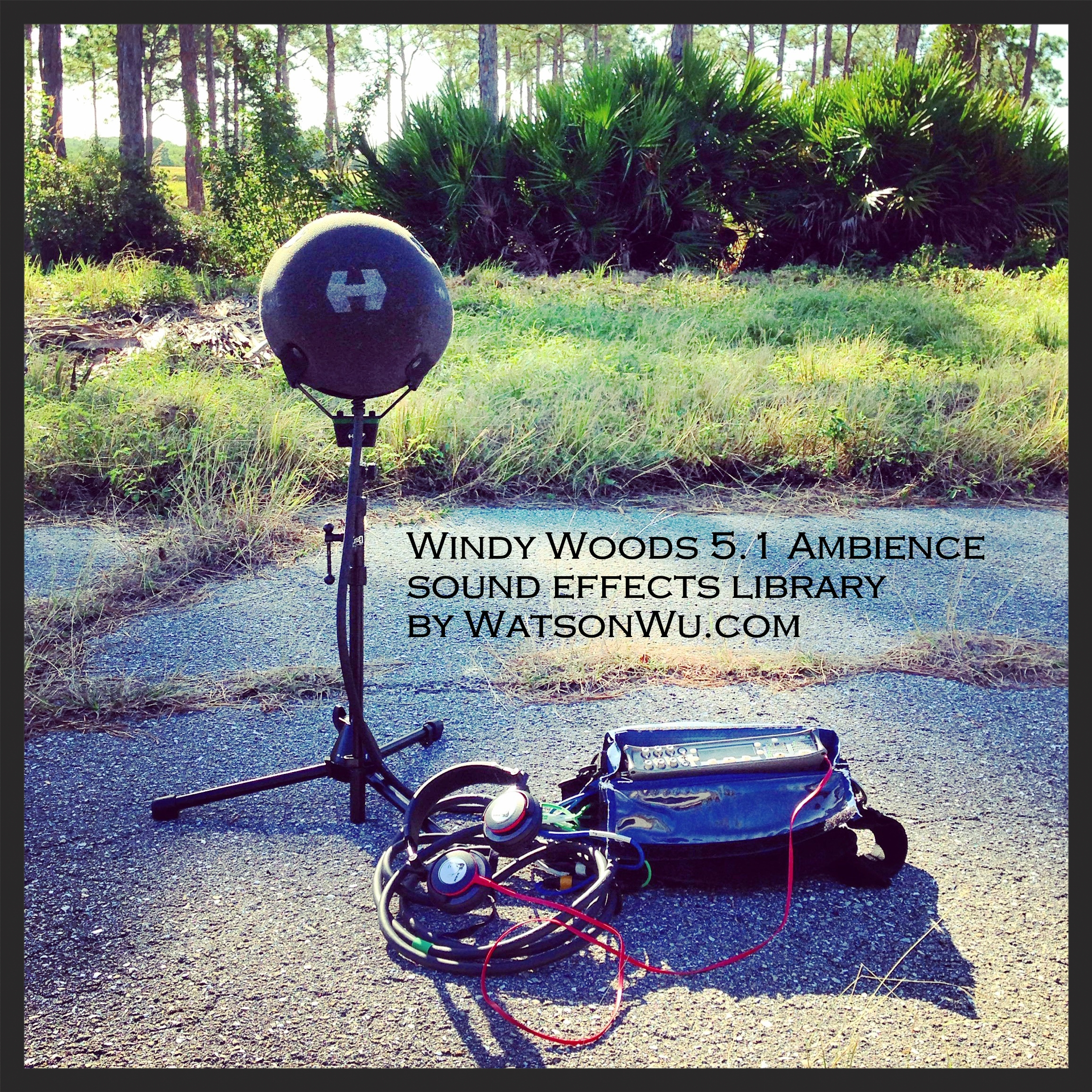 New Windy Woods ambience sound clips in 5.1 surround sound format!