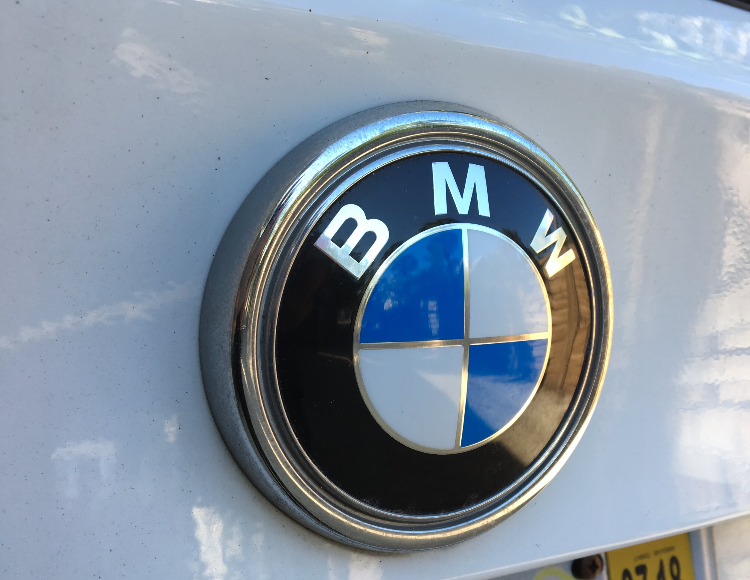 IMG_8338 2010 BMW Logo.JPG