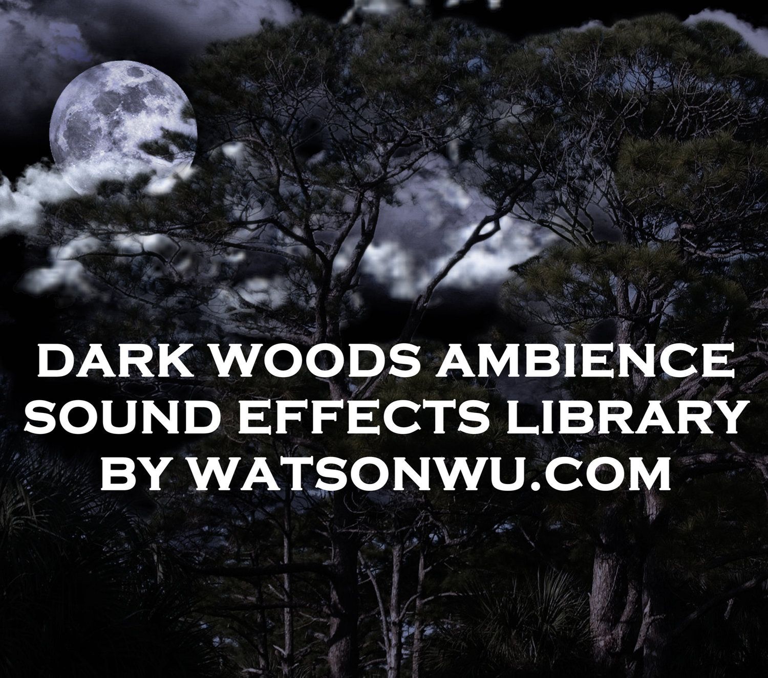 Dark Woods ambience SFX Library
