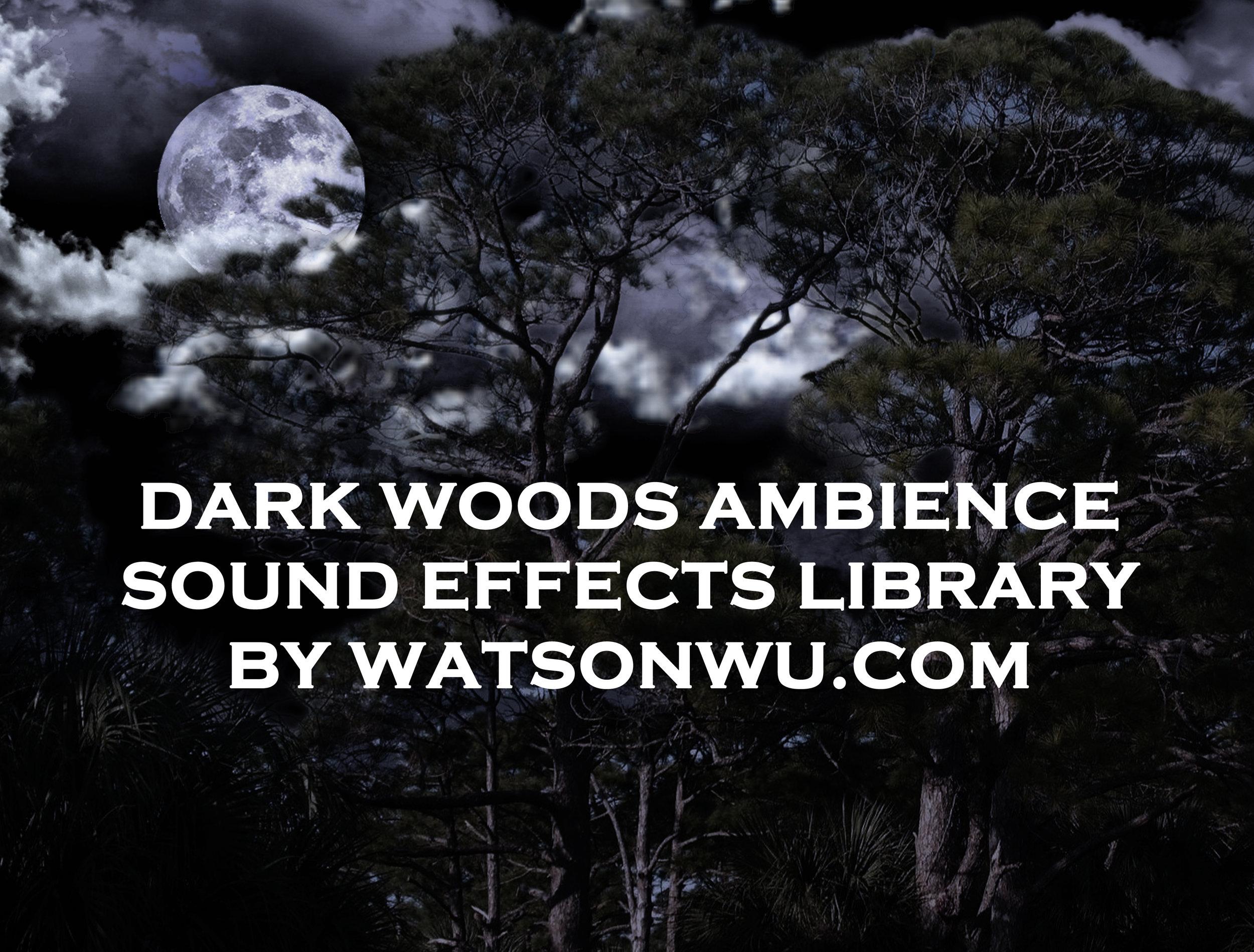 _Dark Woods Ambience SoundFX Library by WatsonWu.com.JPG