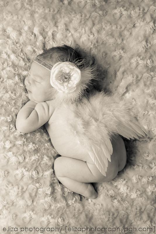 Newborn Photography :: Pittsburgh :: e.liza photography :: www.elizaphotographypgh.com